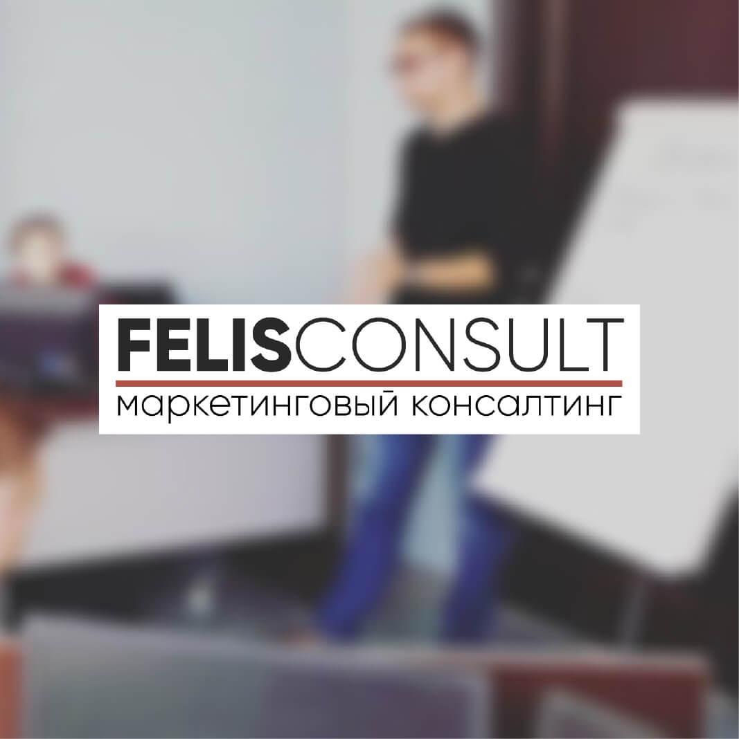Felis Consult School